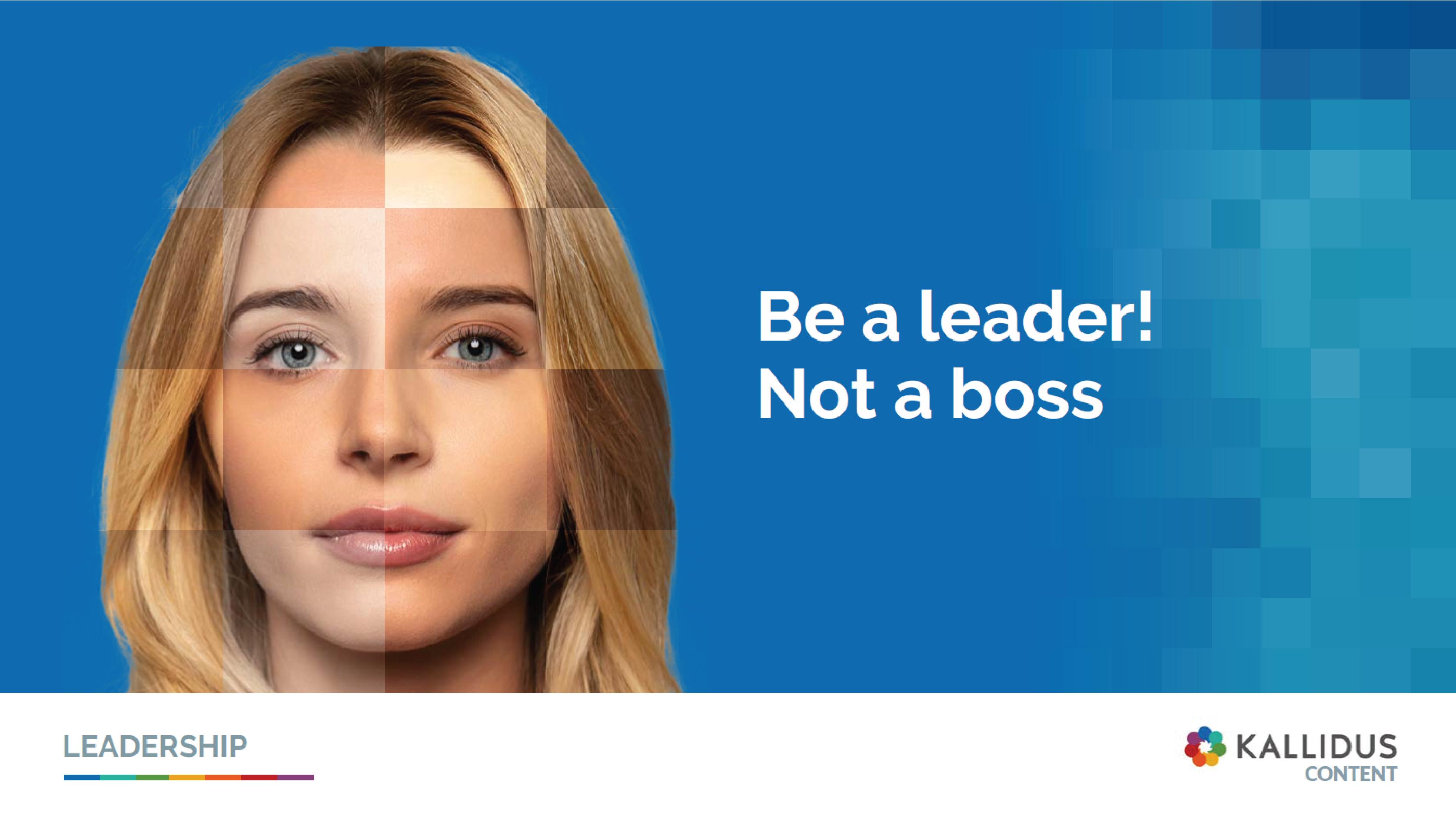 leadership mini guide cover